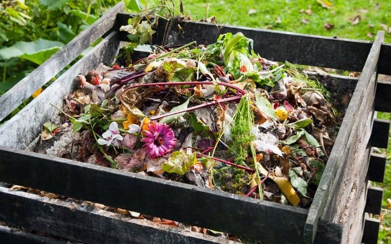 what is compost bin