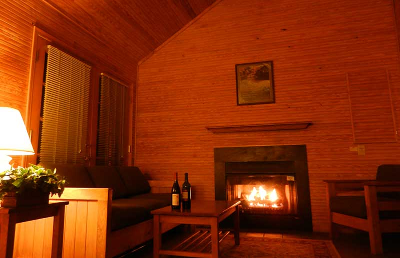 In winter, you can have fireplace-lit coziness with the flick of switch, turning on the gas fireplace at Silver Springs State Park. (Photo: Bonnie Gross)