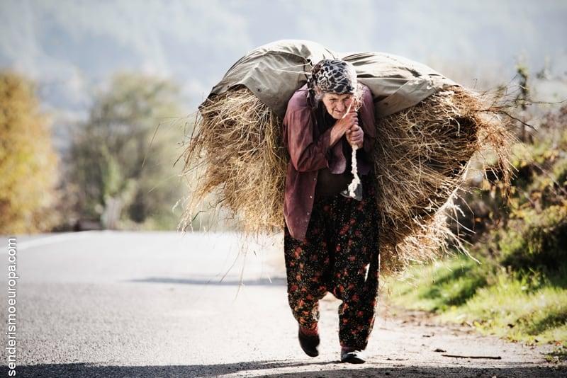 población centenaria de Bulgaria