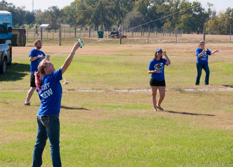 Come Fly a Kite Event at Chapin Park