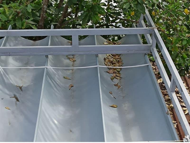 thường xuyên vệ sinh lá cấy rác thải trên mái che di động