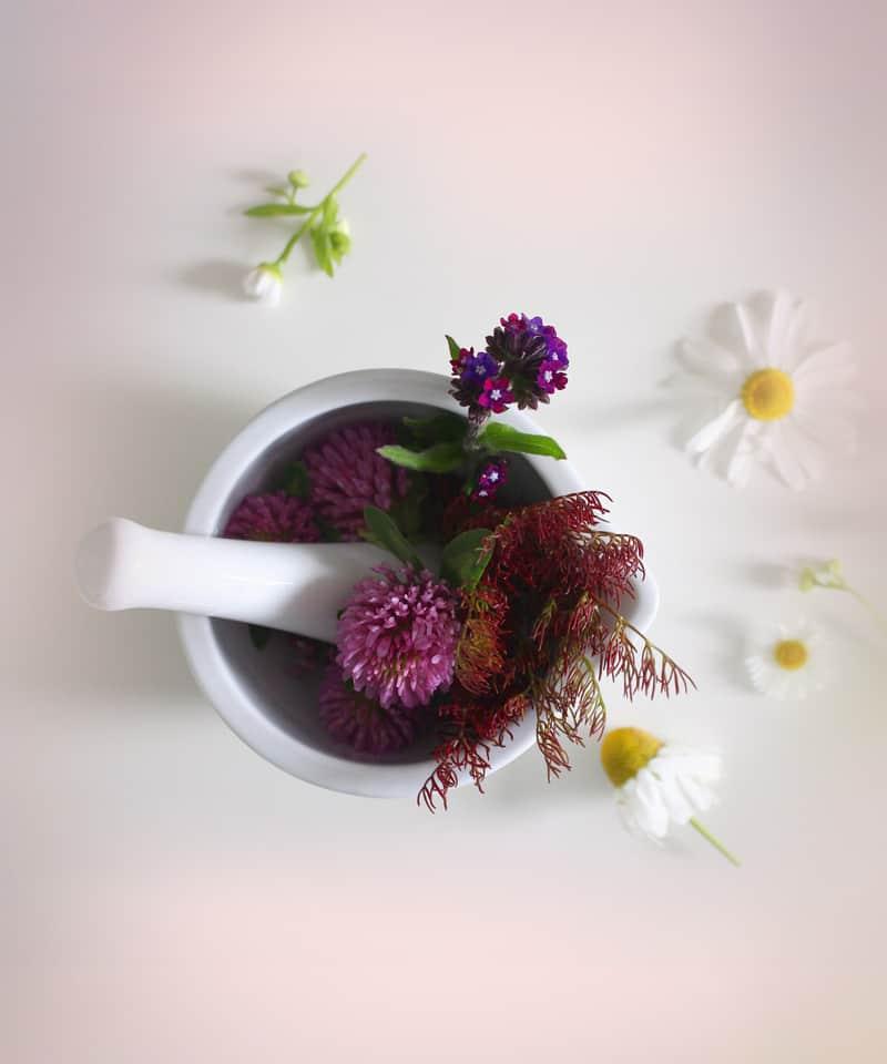 Kosmetik Produkte nachhaltig und gesund- Claresco Cosmetic Reichenbach