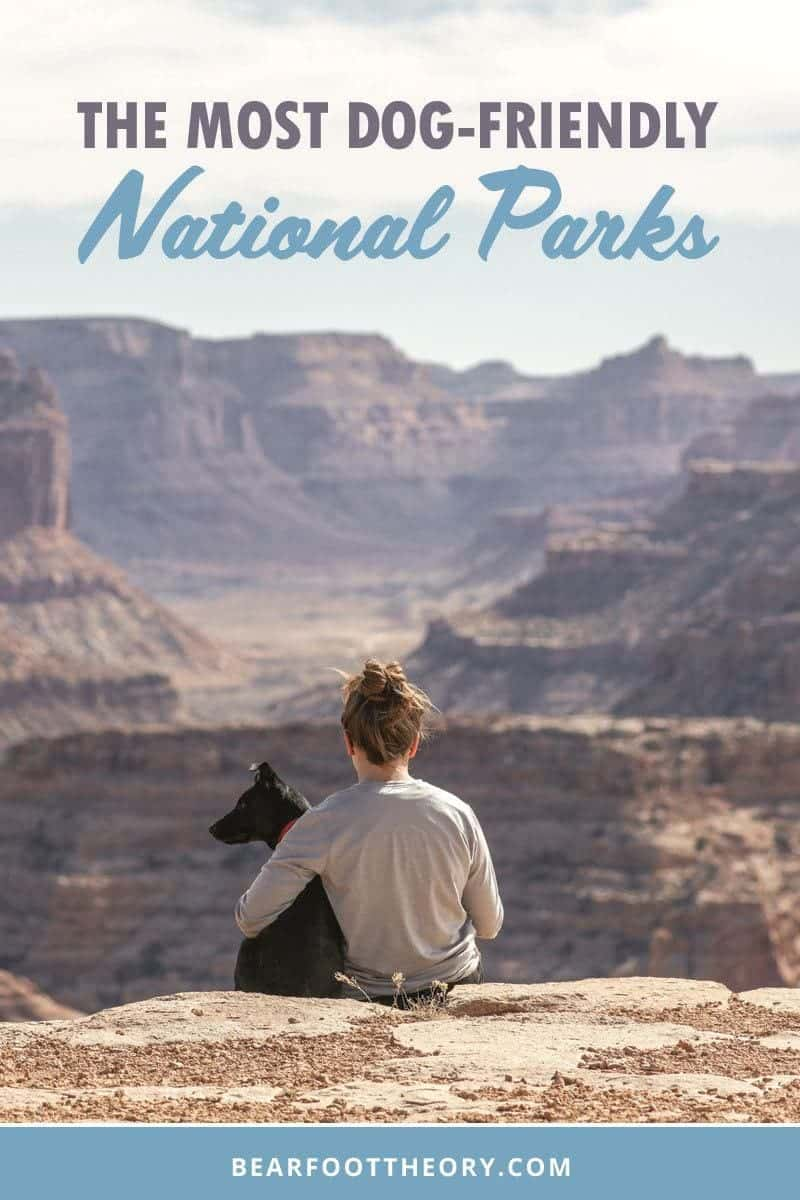 Road tripping with your dog? Here are the most dog-friendly National Parks, along with info on trails and campgrounds where pets are permitted.