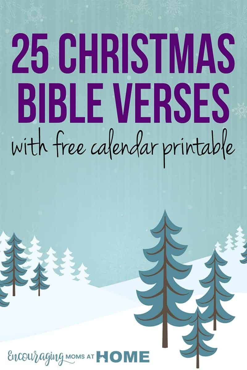 Are you looking for a different way to read through the birth of Jesus this Christmas? We have a fun FREE printable that can be used as an Advent calendar or simply a way to celebrate the true meaning of Christmas. It's perfect for kids and adults alike.