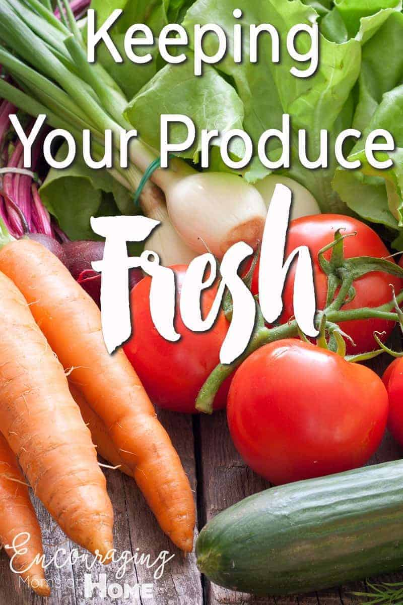 Keeping your produce fresh for short term use can be tricky.