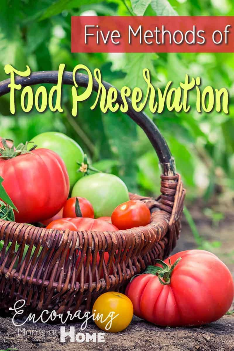Did you know that some foods, like fresh fruit, are really easy to preserve.  Here are five methods of food preservation that will allow you to have fruits and veggies year round.  The plus is that it helps save on your grocery bill.