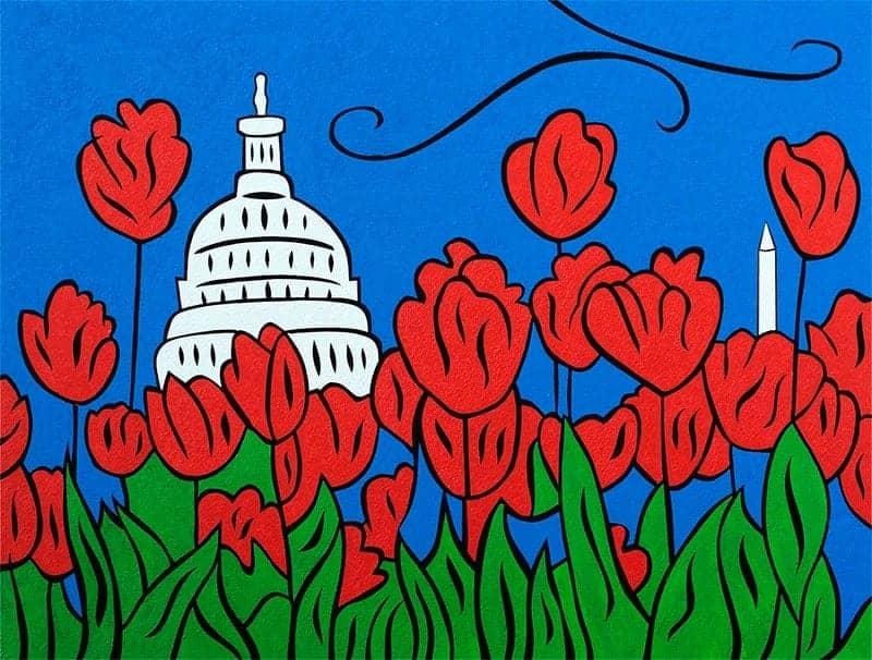 DC Tulip Pop 1