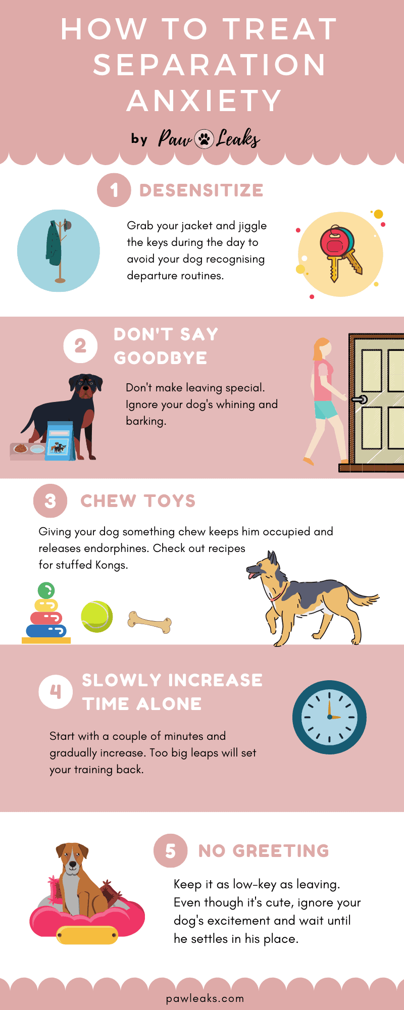 Infographic explaining how to treat dog separation anxiety.