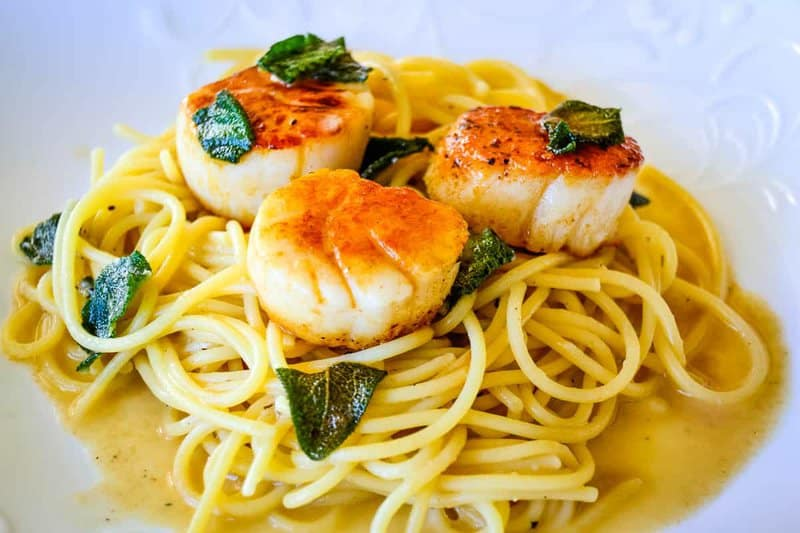 Close up of sage browned butter seared scallop pasta on a white plate.