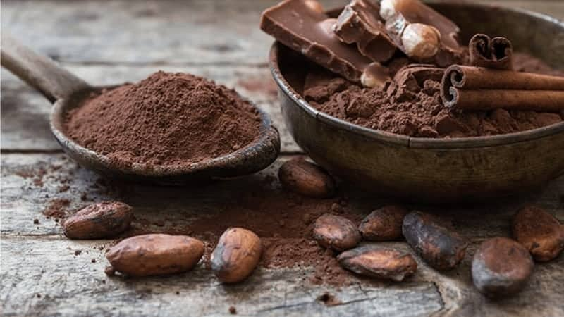 20 Cacao Superfood Recipes