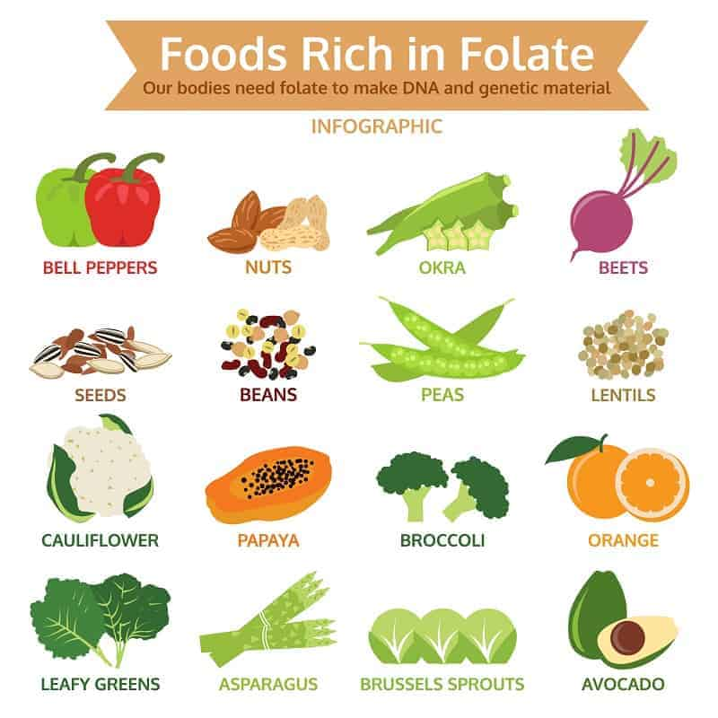 oods rich in folate