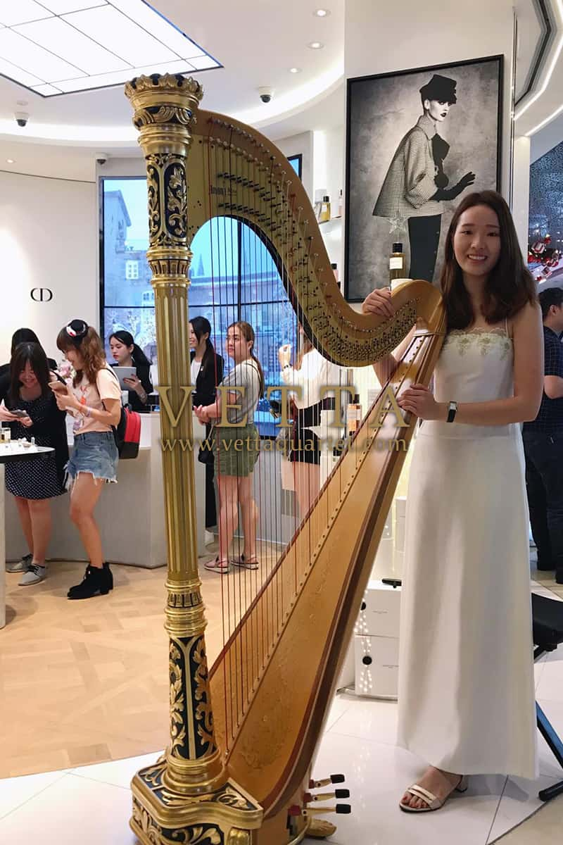 Solo Harp for CRM Event at Maison Christan Dior, ION Orchard