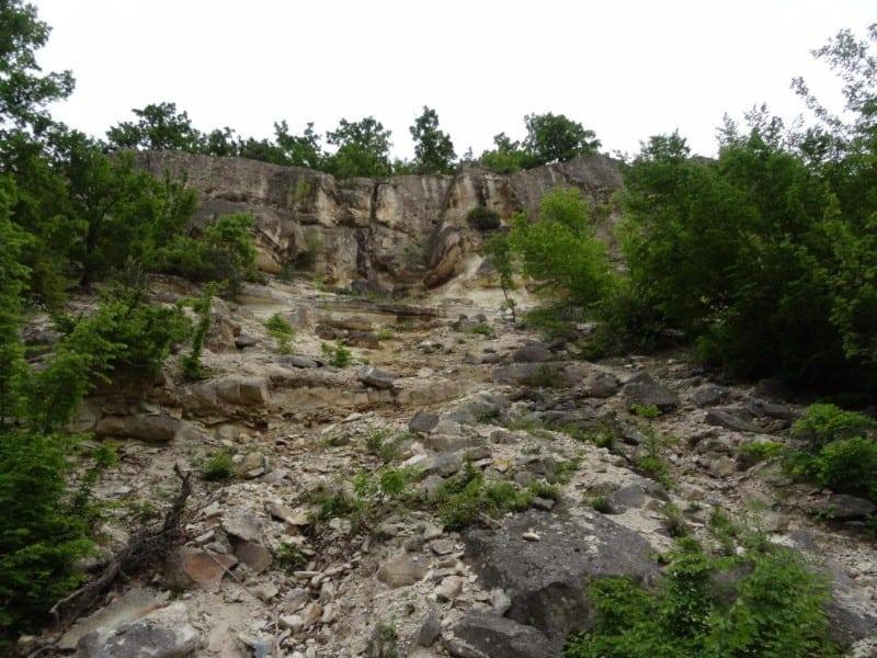 El bosc petrificat de les Muntanyes de Ròdope