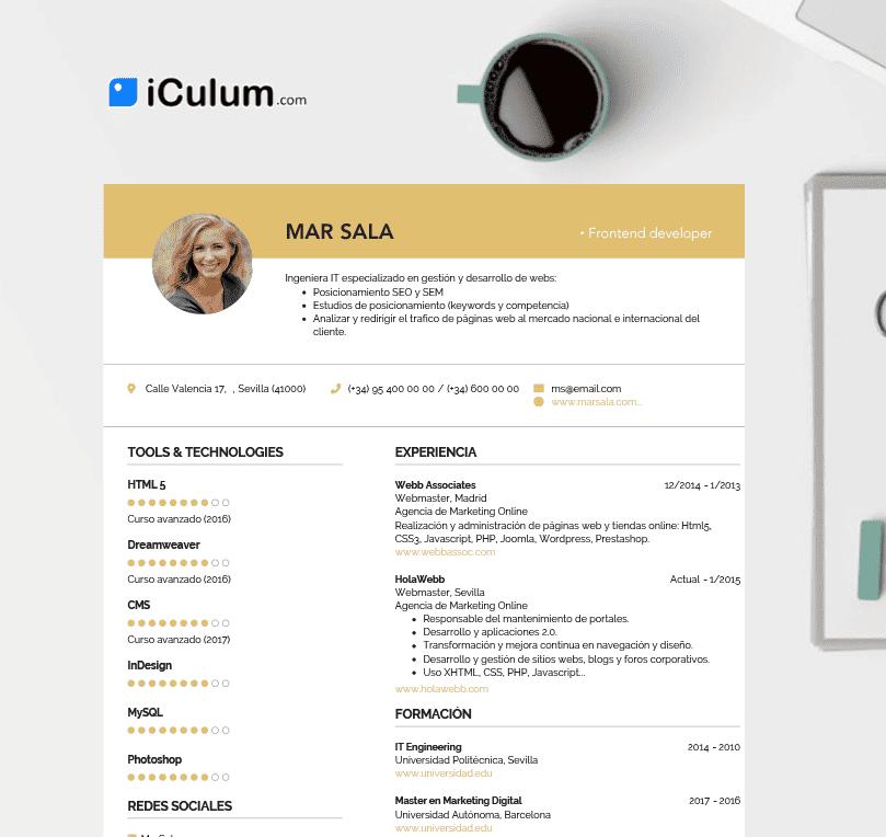 Curriculum taza ordenador