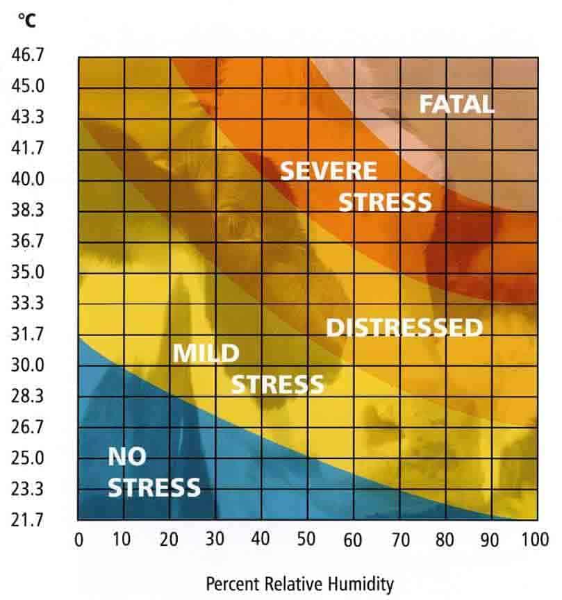 Wärmebelastungsdiagramm des Lüftungssystems für Nutztiergebäude