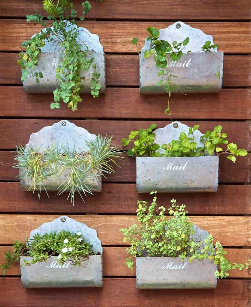 mailboxes repurposed into vertical garden planters