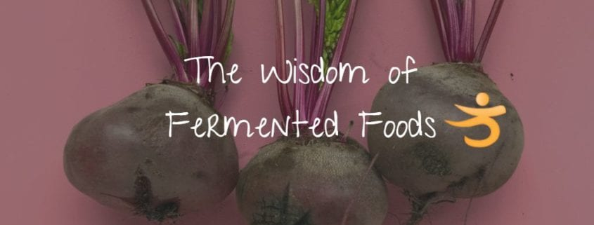 the wisdom of fermented foods