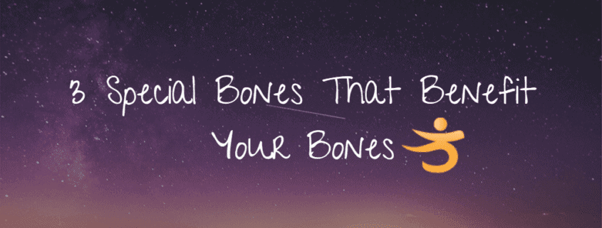 3 special bones that help your bones