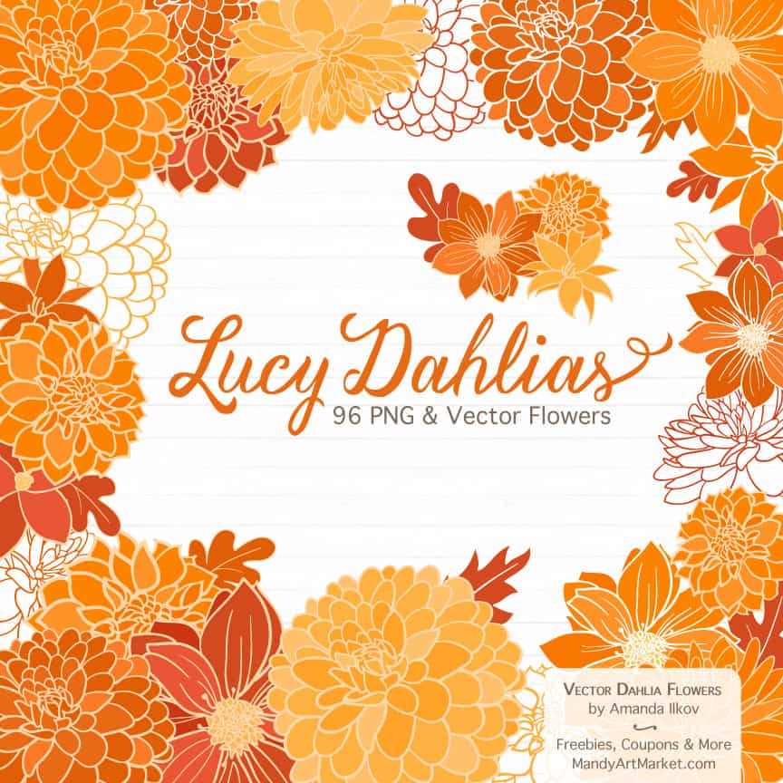 Orange Dahlia Clipart