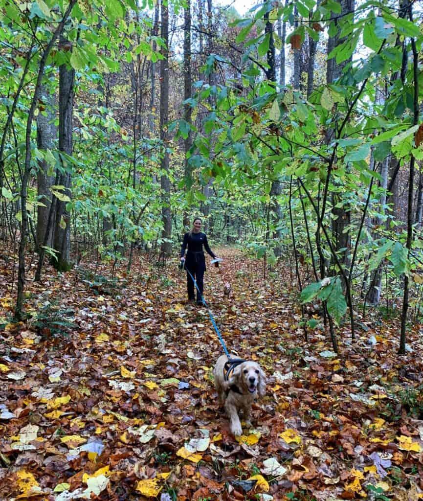 cedar creek state park wv leafy trail