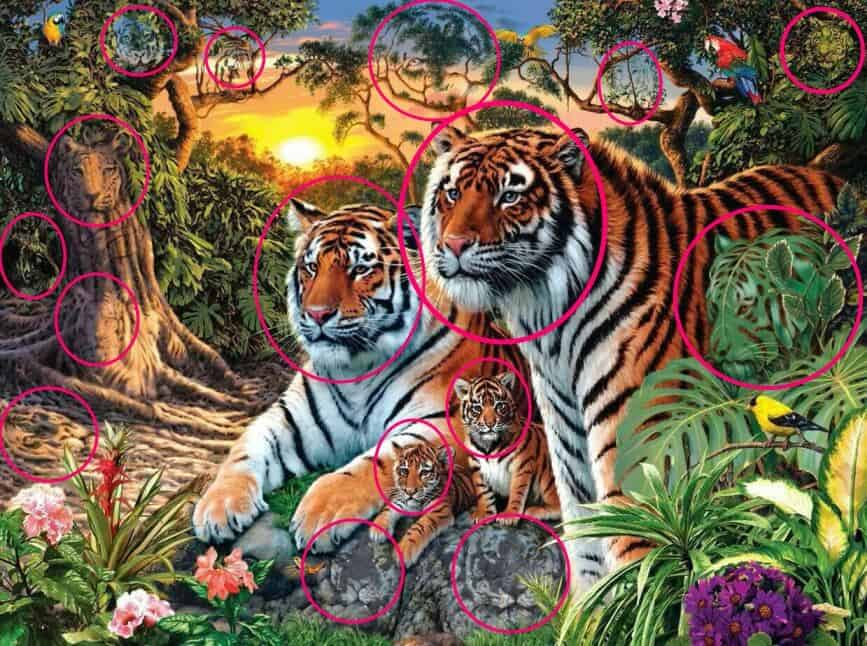 how many Tigers in this picture puzzle answer