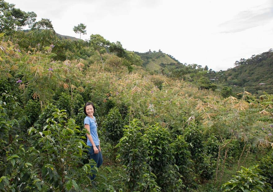 Woman standing in coffee farm