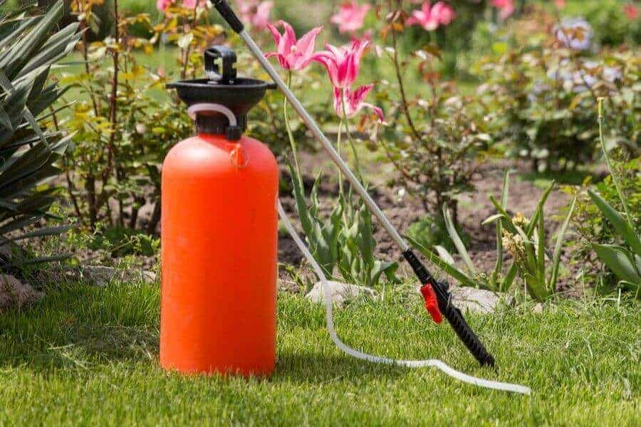 What Are The Pros And Cons Of Liquid Lawn Fertilizer?