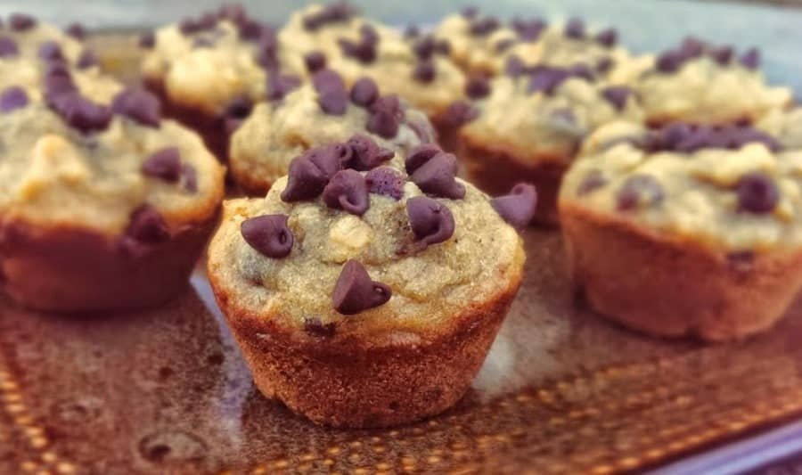 Skinny Peanut Butter Banana and Chocolate Muffins {GF}