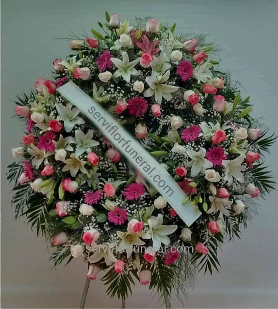 Rosas Rojas Para Funerales Cual Es Su Significado