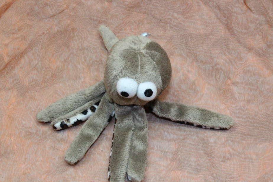 The Octopus, 1 Pcs.