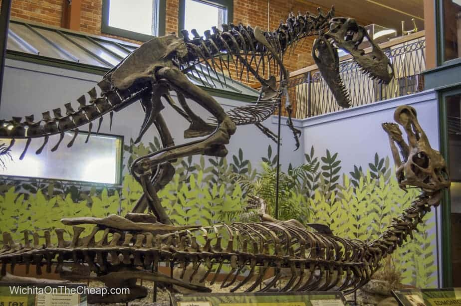 Museum of Word Treasures has one of the most complete dinosaur fossils in North America
