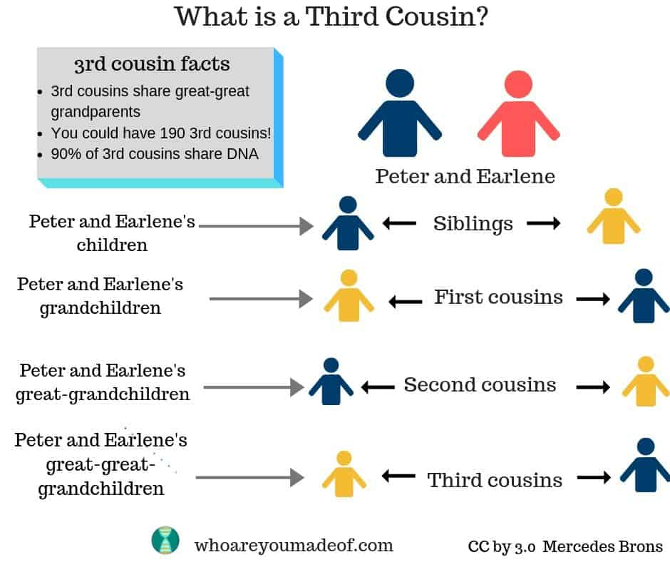 What is a third cousin?  This image is a visual example of third cousins., beginning with siblings (children of the great-grandparents) and ending with the third cousins