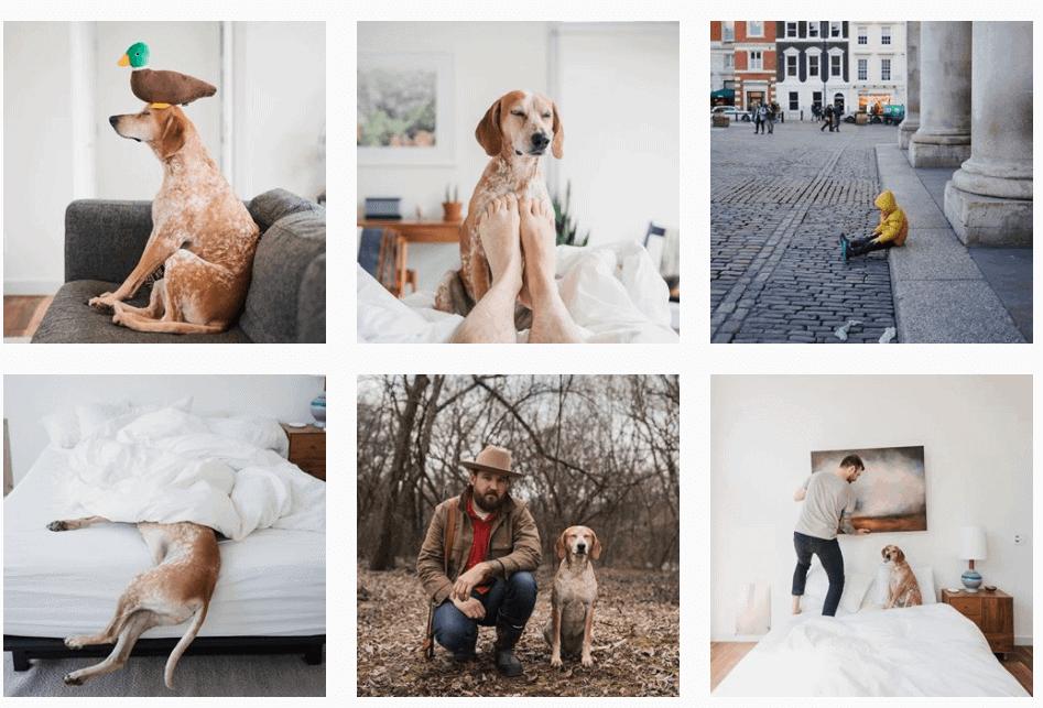 5 Social Media Mistakes To Avoid | Kanuka Digital