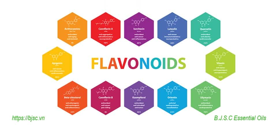 Flavonoidlà gì
