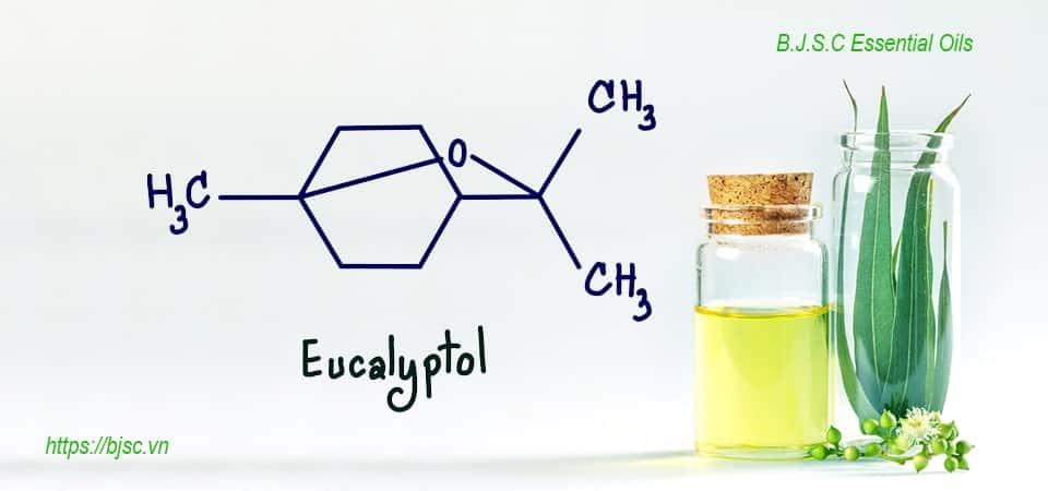 hợp chất eucalyptollà gì-min