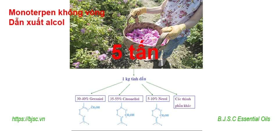monoteroen không vòng dẫn xuất alcol