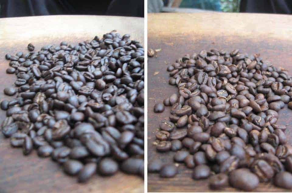 Dark roast and medium roast coffee beans