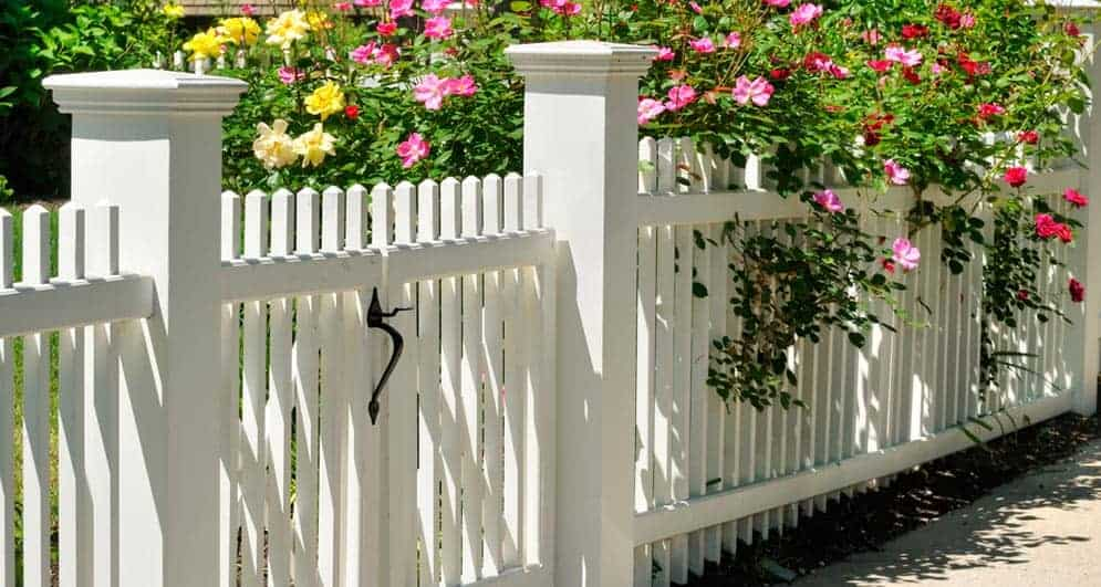 white painted fence with flowers