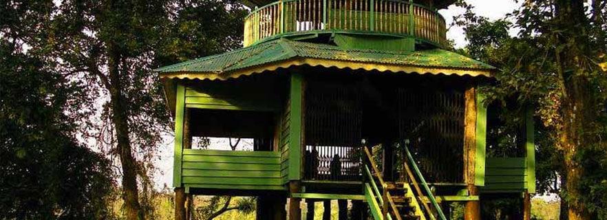 Gorumara Gateway dooars_info