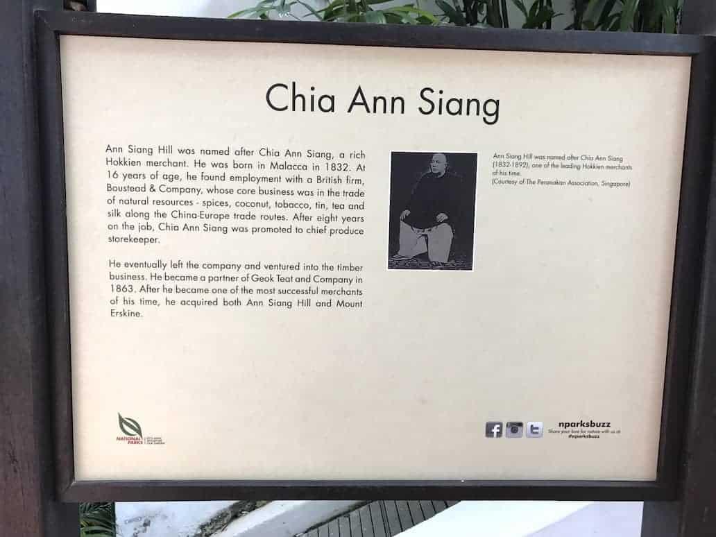 ann siang hill founder