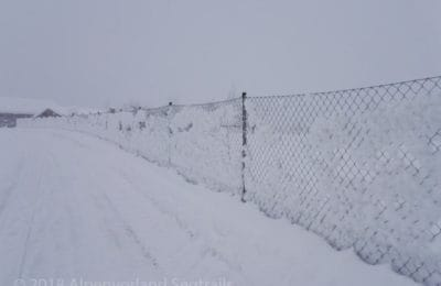 dichtes Schneetreiben