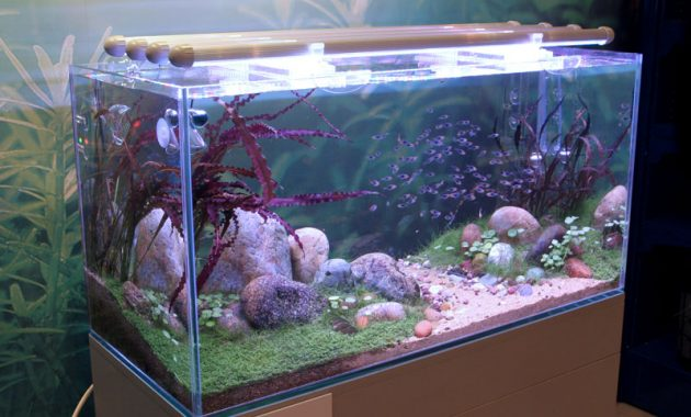 Aquascape Lighting Diy Archives Aquascaper