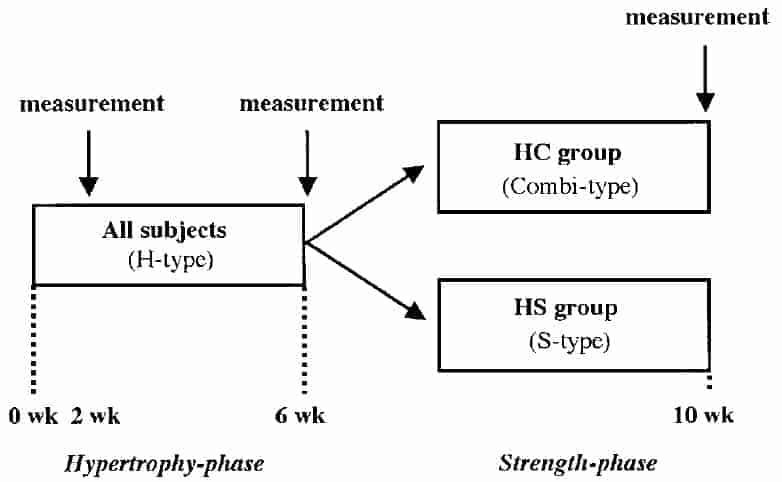 Is there a place for high-rep sets in serious weight training programs?