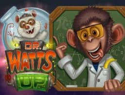 Microgaming – Dr Watts Up