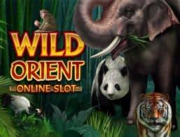 Microgaming – Wild Orient