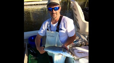 Dr. McGrath tagging speckled trout in warmer times