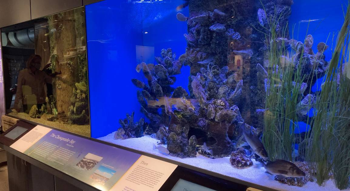 VIDEO: Maritime Museum Debuts New Exhibits