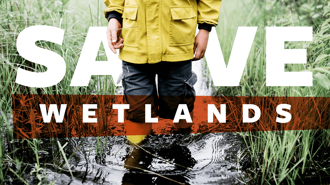 Save Wetlands - Digital Agency - Citizen Best