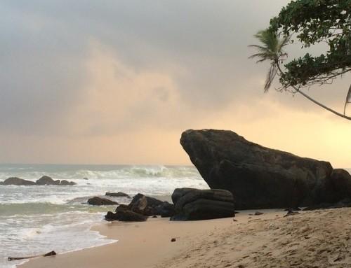 Sri Lanka – Berg, Strand & Dschungel