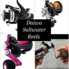 Best Daiwa Saltwater Fishing Reels